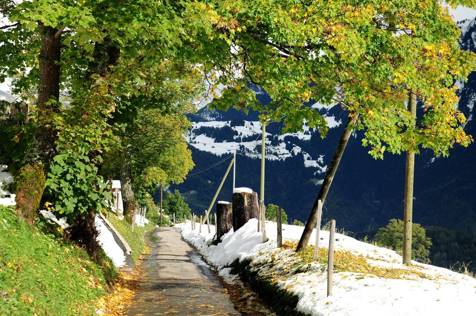 excursión Suiza andar Vaud Leysin