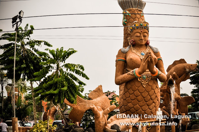 ISDAAN, Calauan, Laguna
