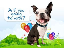 Click On Me To Vote For Your Favourite TPD Post!