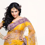 Ramya in Yellow Saree Photo Gallery