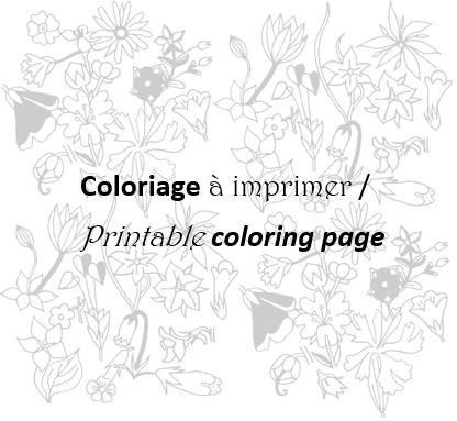 Modele Coloriage À Imprimer - Coloriages gratuits pour adultes, lancez vous ! Prima