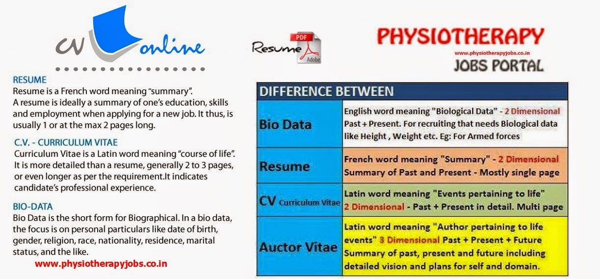 physiotherapy jobs  difference between resume  curriculum vitae  cv   auctor vitae  av  and biodata