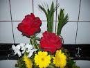 Rosas Colombiana