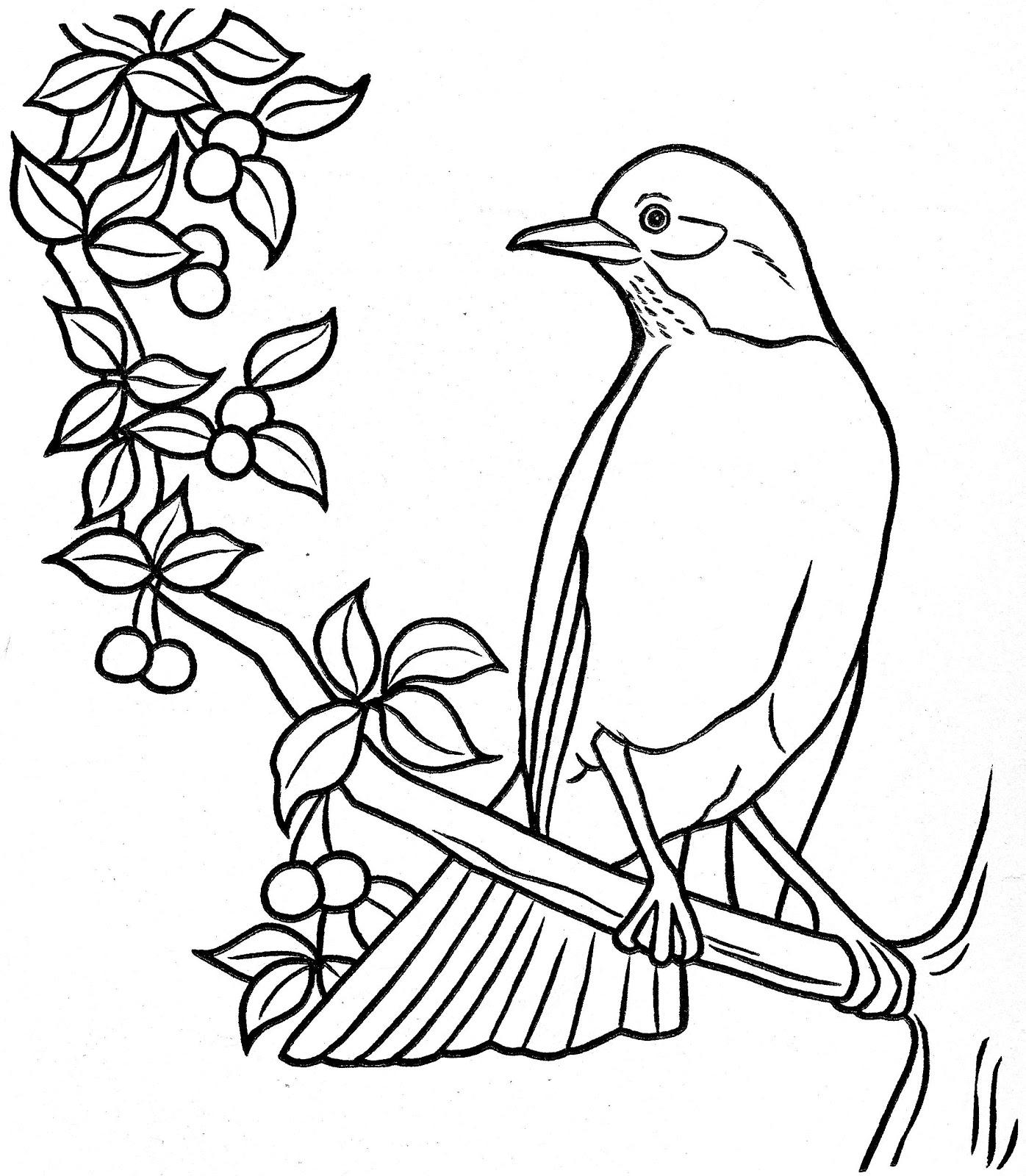 Top Desenhos para Colorir: Desenhos para Colorir Pássaros JE75