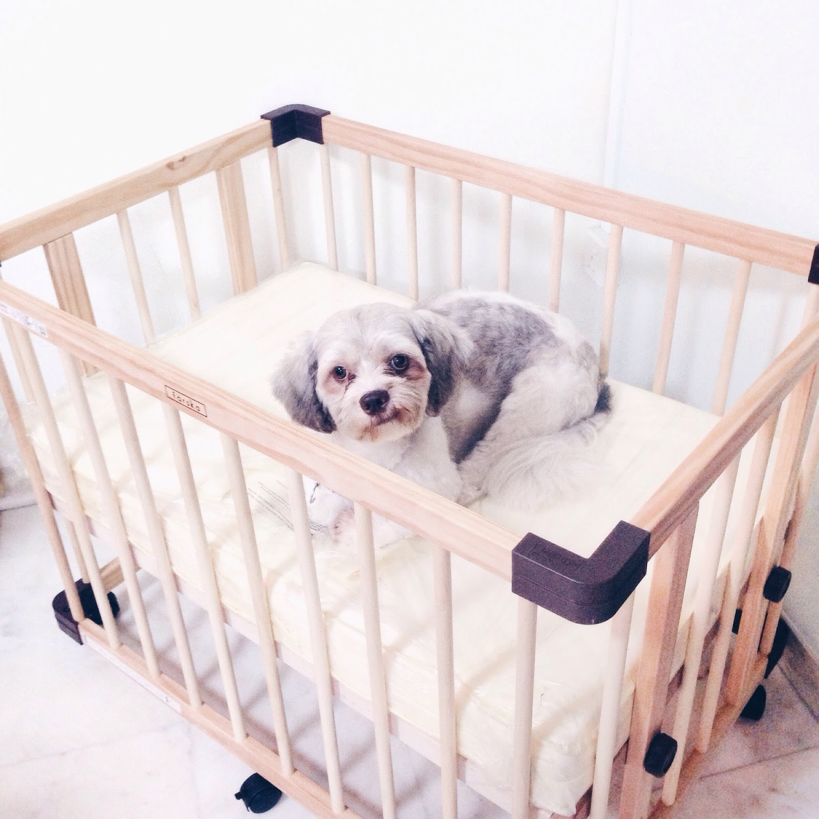 com products shop puppy set ebayisapi qtyman cribs littlest ws accessory buy ebay pets quantitymanager nap vieweapp time double from a lps z dll crib pet collections appid