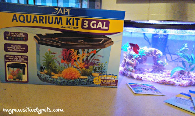 API Fishcare Aquarium Kits #APIfish