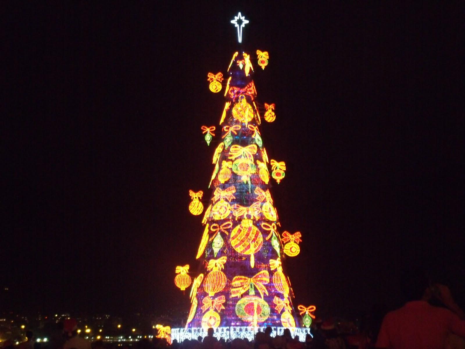los rboles de navidad ms del mundo