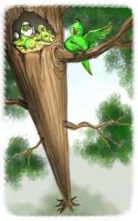 tree, birds, parrot