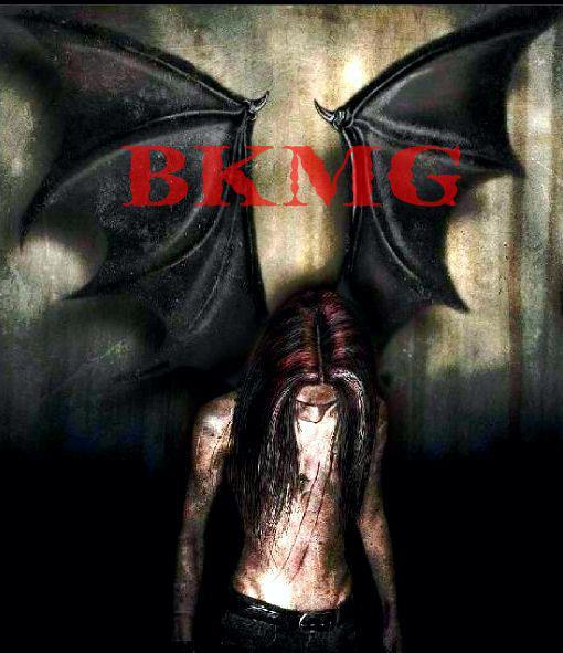 Blog Creator, B.K.M.G. LLC Promotions