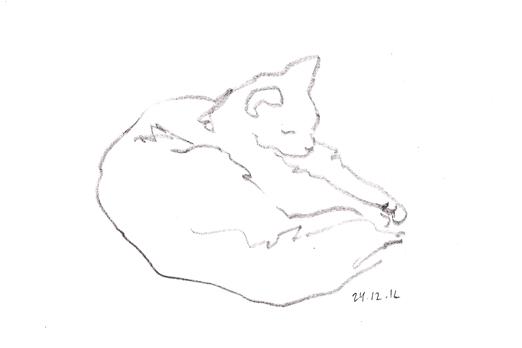 кот набросок