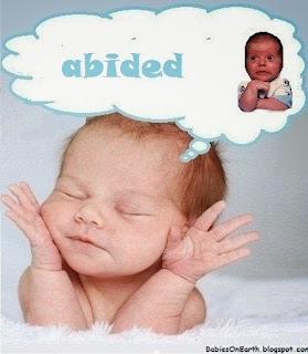 abided