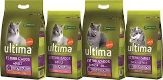 affinity para gatos esterilizados