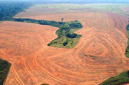 external image amazon_deforestation.jpg