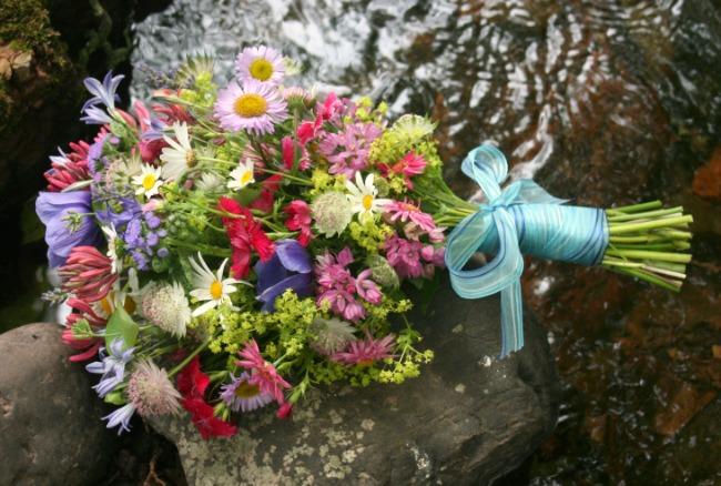 Flowers In Season For A June Wedding : Gallery for gt june flowers in season weddings