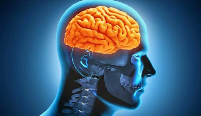Tips Sederhana Menyegarkan Otak