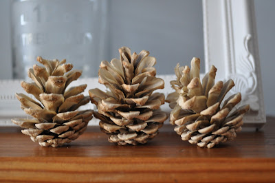 bleached pine cones http://snadralovesblogging.blogspot.co.uk/