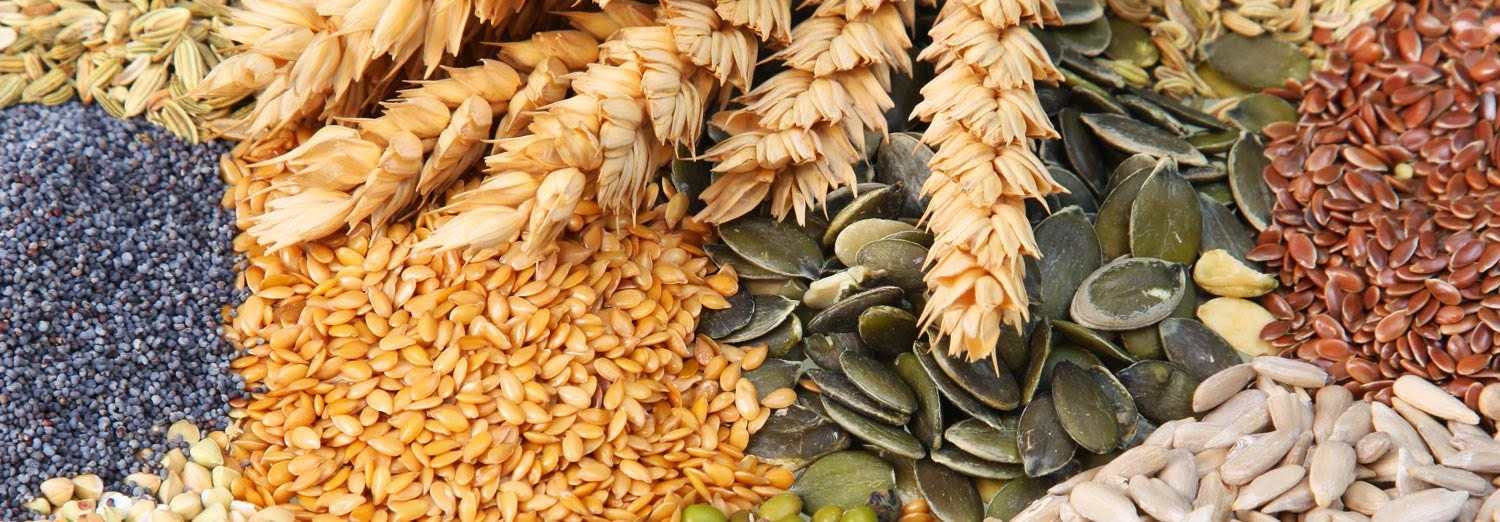 mcx cardamom, mcx coriander,agri commdity tips , Free Agri Tips, free agri call, Future Trading Tips