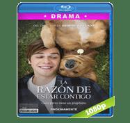 La Razon de Estar Contigo (2017) Full HD BRRip 1080p Audio Dual Latino/Ingles 5.1