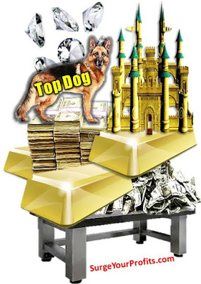 http://www.surgeyourprofits.com/2015/08/are-you-leaving-fortune-on-table.html