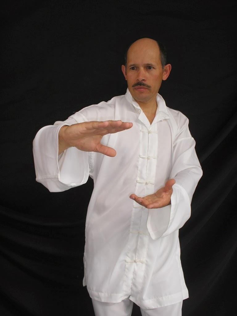 Hapkido, Maestro Gildardo Romero