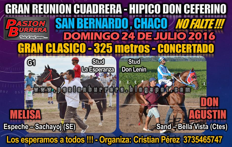 San Bernardo - 24 de julio