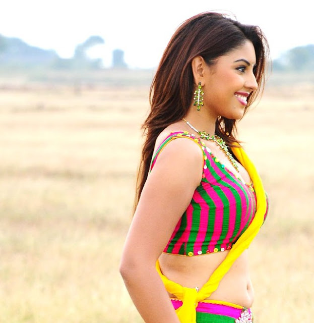 hotolinenews richa gangopadhyay in saree naval photos