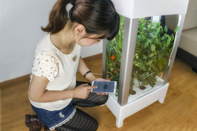 Niwa smartphone-controlled growing system