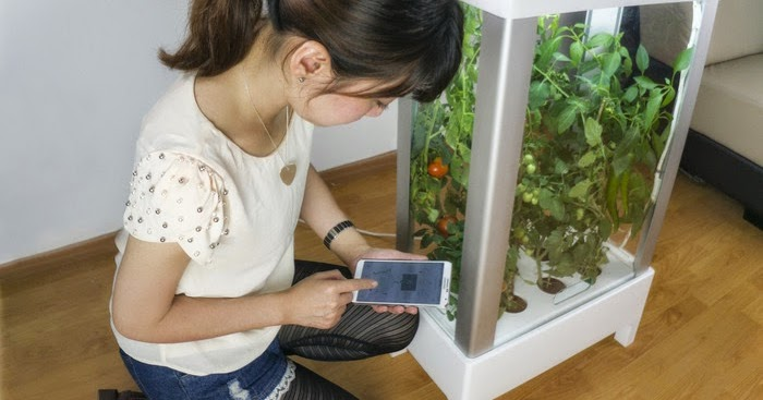 15 Coolest Gadgets For Your Kitchen Garden.