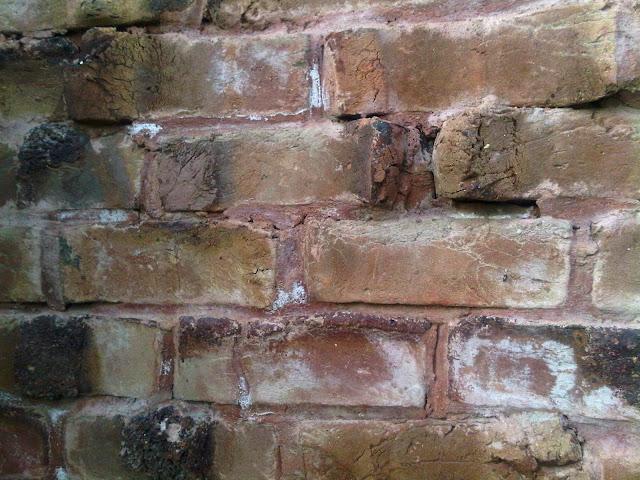 Brick Efflorescence4