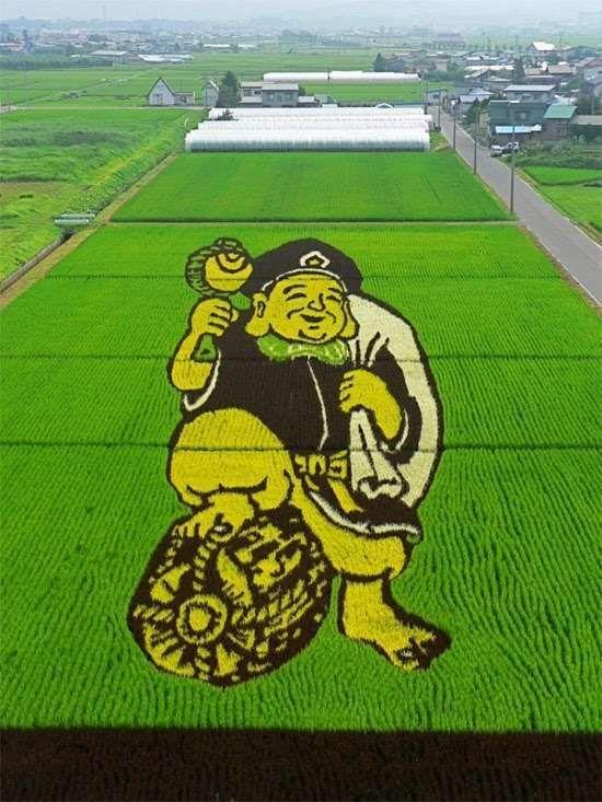 Simsalabim !! Sawah Disulap Jadi Lukisan Di Jepang !! [ www.Bacaan.ME ]