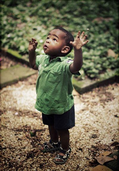 """""""Se creres, verás a Glória de Deus."""" (João 11:40)"""