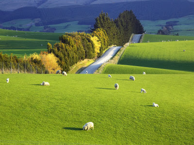 New Zealand World Most Beautiful Places New Zealand South Island