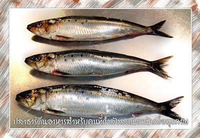 ปลาซาร์ดีนอาหารสำหรับคนที่กำลังลดน้ำหนักเพื่อสุขภาพ
