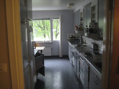 A Kitchen in Flogsta