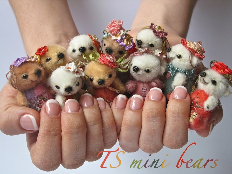 TS mini bears