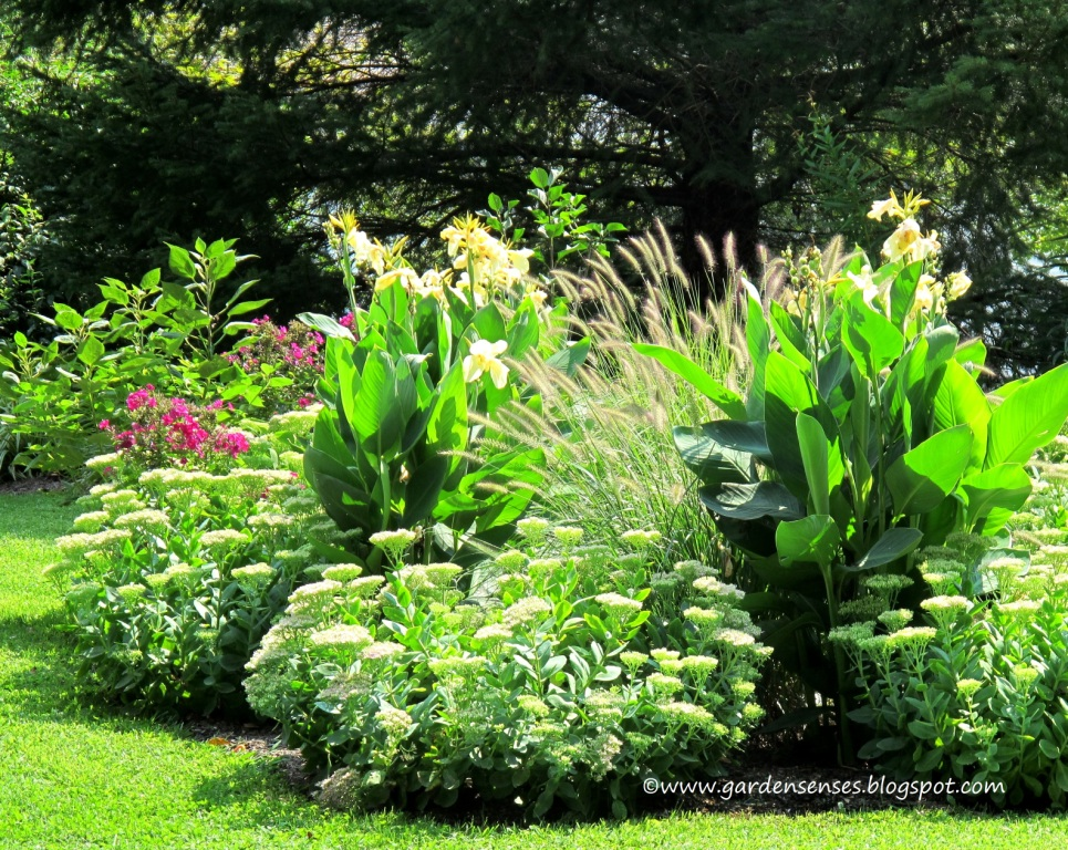 Garden sense layer for a lush look for Plants for outdoor garden