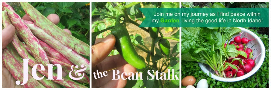 Jen & the Bean stalk