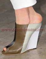 gaya sepatu 2013