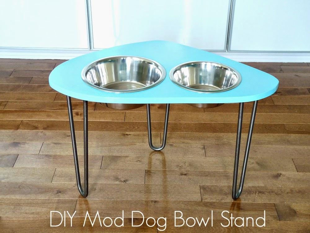 http://1.bp.blogspot.com/-K39dL34-7YI/U8LowchJVoI/AAAAAAAAWQU/KX5nJDQ0wjE/s1600/Dog+bowl+stand+text.jpg