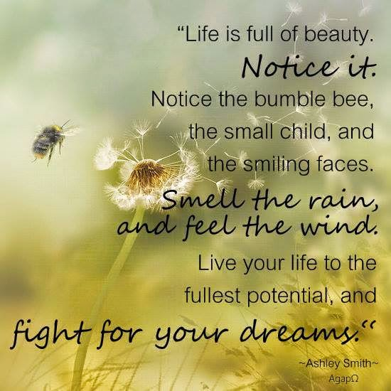 Fight For Your Life Quotes Awesome Life Is Full Of Beautynotice Itnotice The Bumble Bee The