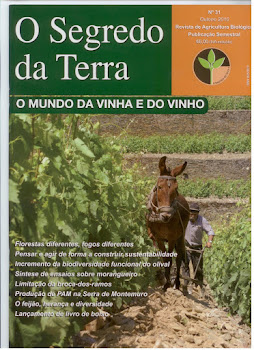 Revista Segredo da Terra, n 31:O Mundo da vinha e do vinho