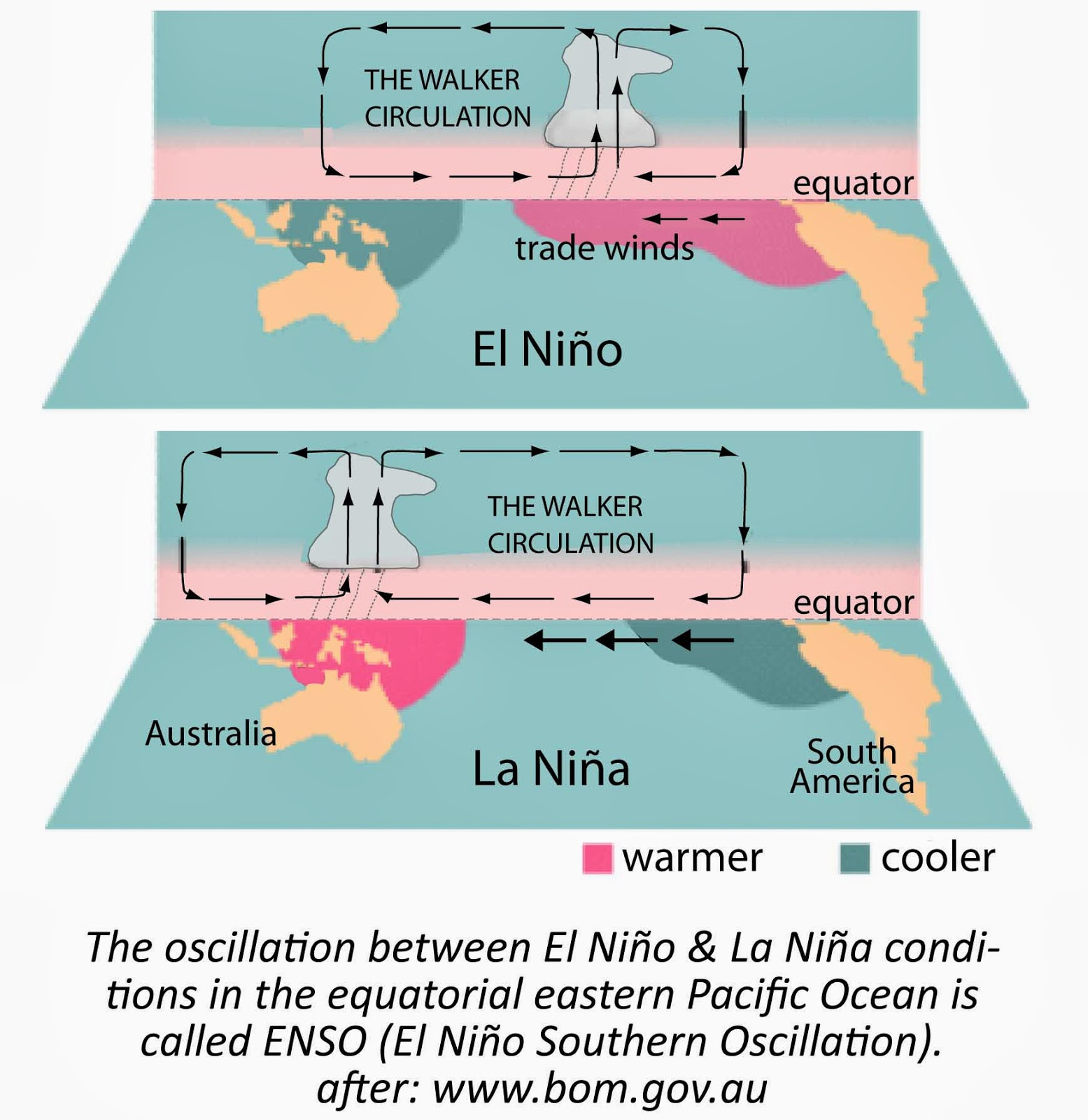 el nina and la niña El niño and la niña are opposite phases of a naturally occurring global climate cycle known as the 'el niño-southern oscillation' (enso) they disrupt normal patterns of wind and rainfall.