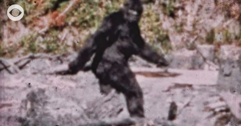"""does bigfoot exist essay """"bigfoot are reported across all social, educational, and economic classes,""""  writes  """"whether bigfoot exists does not matter,"""" he claims at one point  get  the best of ploughshares essays and articles right to your inbox."""