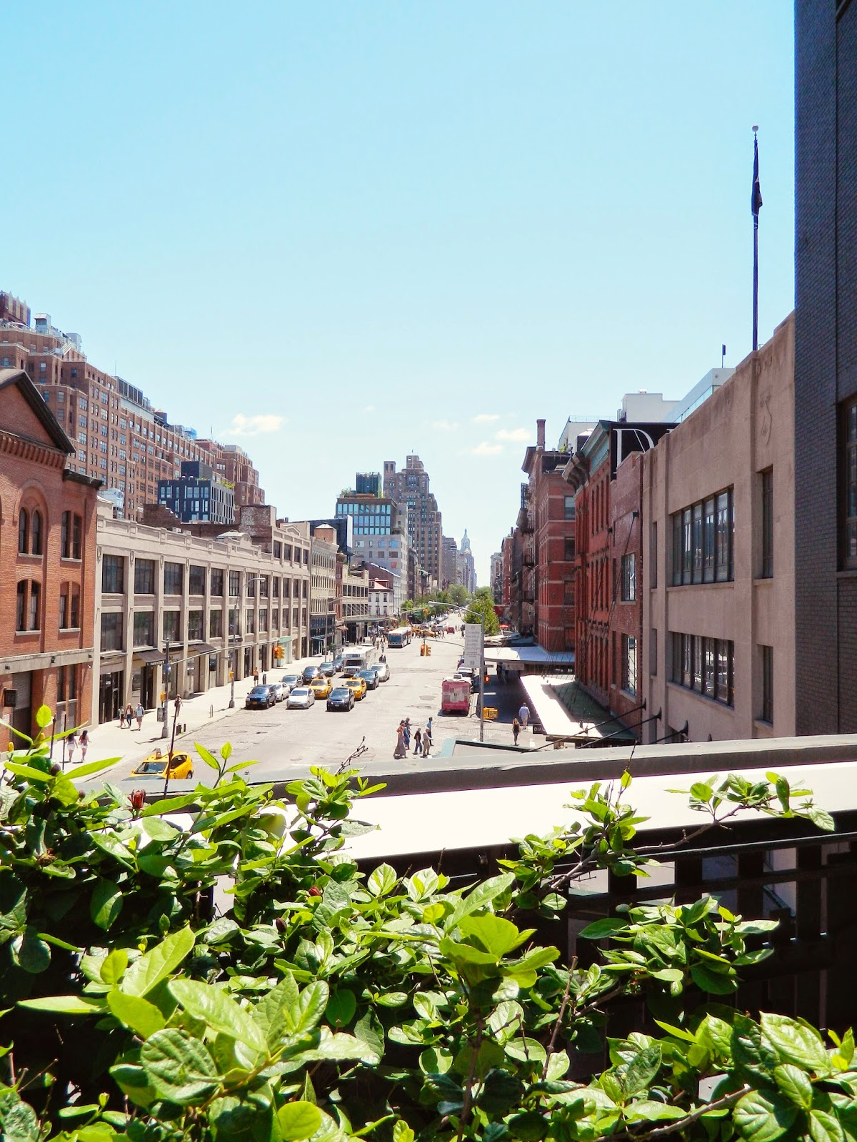 new york city high line of buildings pretty brown horse old industrial buildings yellow cabs perspective city