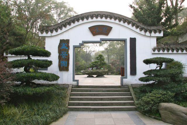 seattle chinese garden nanshan arboretum in chongqing - Seattle Chinese Garden