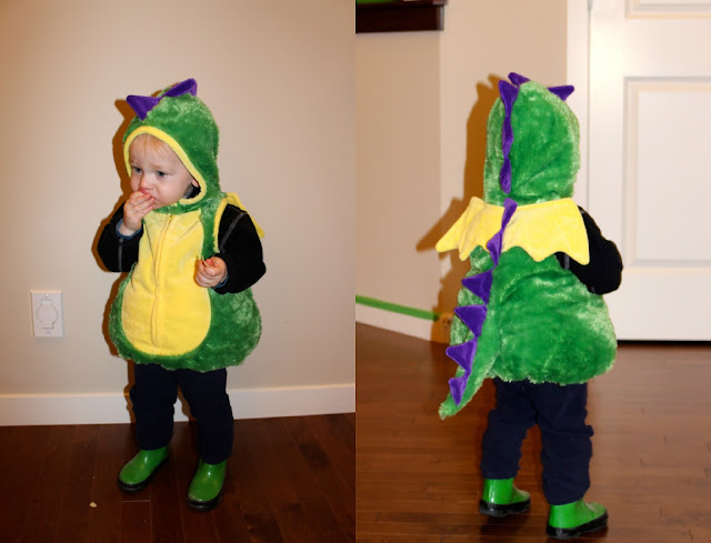 Toddler Dragon Halloween Costume