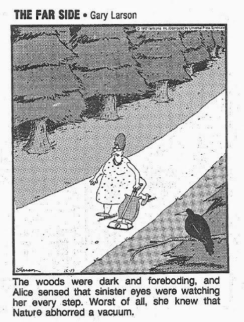 cartoon-gary_larson-nature_abhors_vacuum