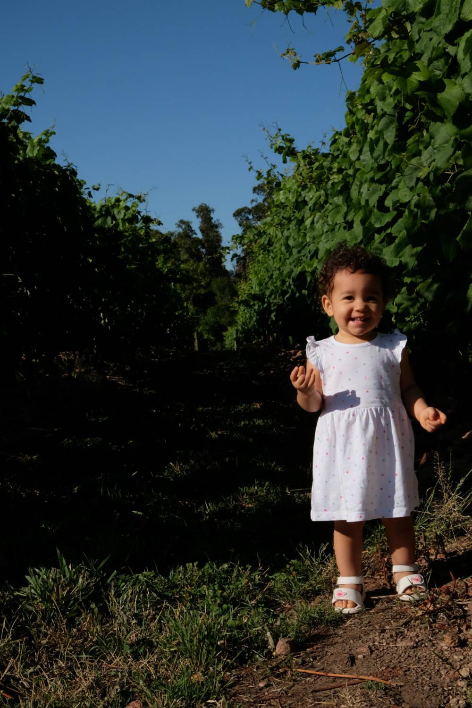 Visita vinicola Bouza