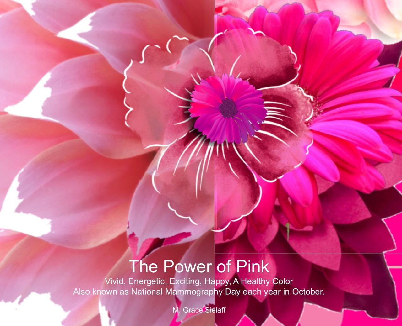 The Power of Pink title=