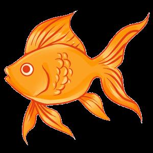 Скачать Игры с рыбками Бесплатно  Полные Бесплатные Игры